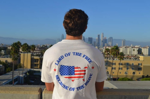 Salute the Brave Land of the Free Tee Shirt