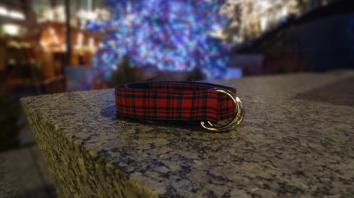 Chicago Belt Co Christmas Ribbon Belt