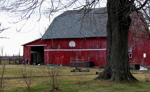Basketball Hoop on Barn