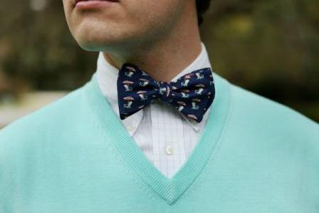 Southern Proper Adirondack Beau Bow Tie