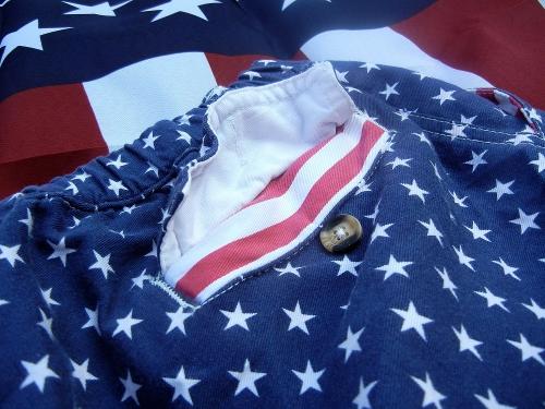 Chubbies Mericas Back Pocket Shorts