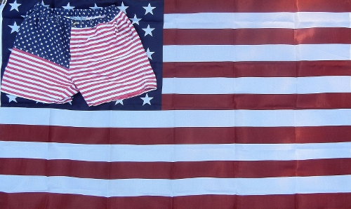 Chubbies Mericas Flag Shorts