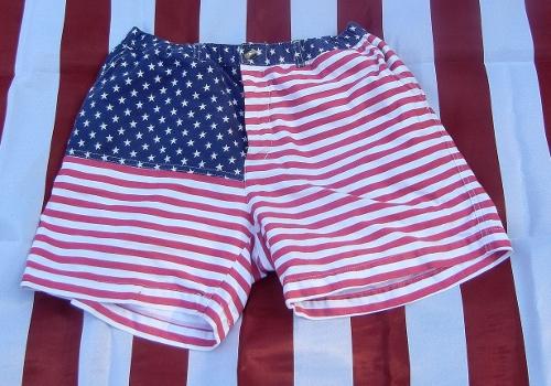 Chubbies Mericas Shorts